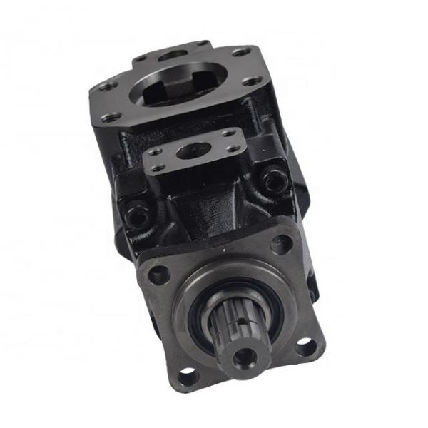 DENISON T6DC-050-025-1R02-B1 vane pump #1 image